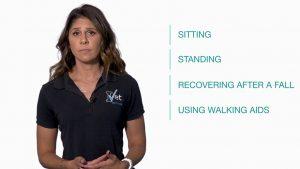 Training Videos - IVET